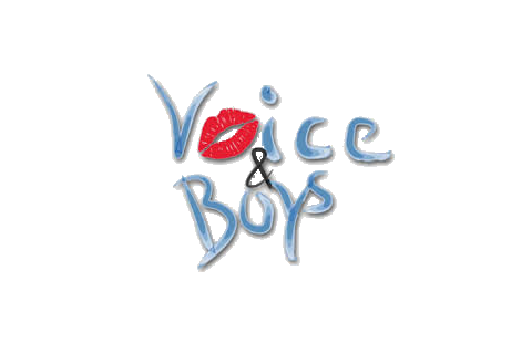 Voice & Boys - Die Unplugged-Event-Band, Musiker · DJ's · Bands Ludwigsburg, Logo